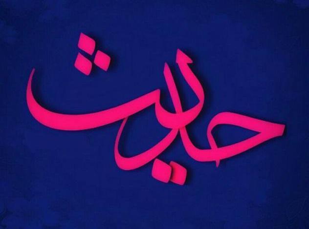 حدیثی از امام علی(ع) در مورد نقش دو مقوله مهم در کسب پیروزی